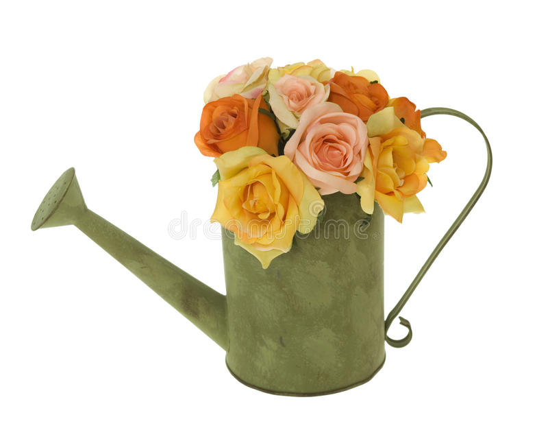Yellow, Pink and Orange Roses in Water Can stock photo
