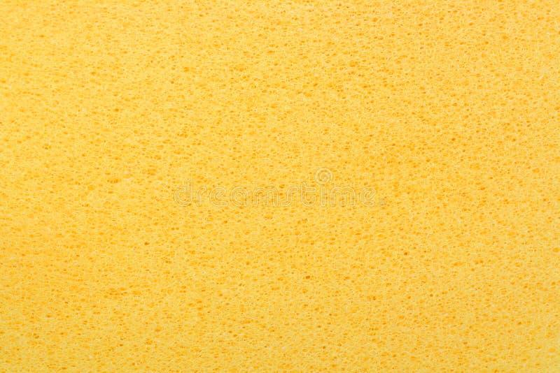 Yellow porous bast whisp surface stock photography