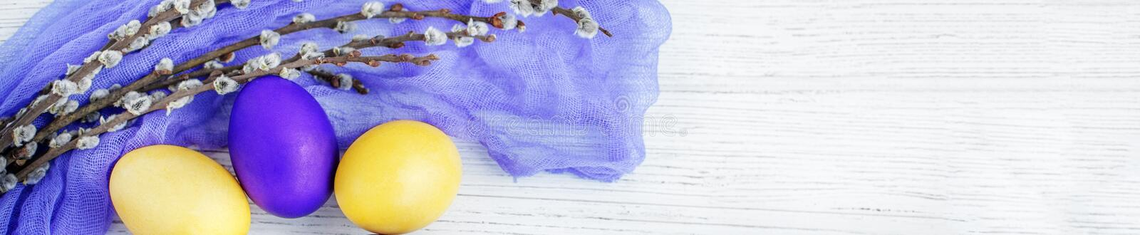 Yellow and purple eggs and willow. Congratulations. Concept Happ royalty free stock images