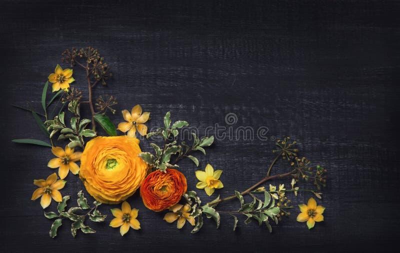 Download Yellow Ranunculus On Black Background Stock Image - Image of frame, peony: 108957719