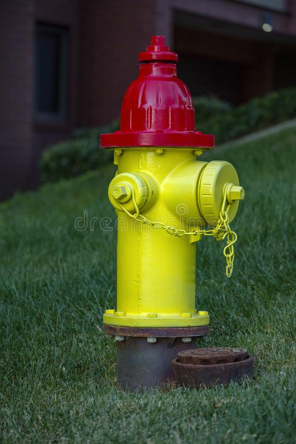 Yellow and red fire hydrant downtown residential. Yellow and red fire hydrant downtown Salt Lake City stock photography