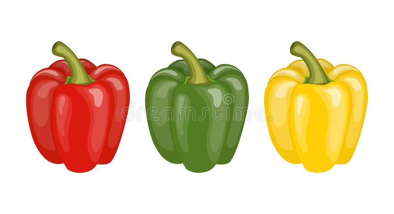 Yellow, red and green pepper. Set of three peppers. Yellow, red and green pepper. vector illustration in flat style vector illustration