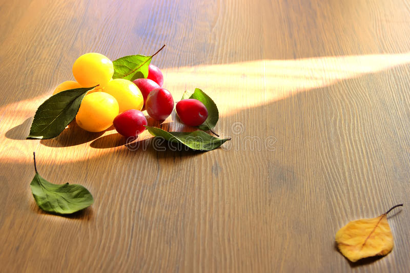 Yellow and red honey plum. Plum leaves buffet board wood texture background yellow green red brown berry royalty free stock photo