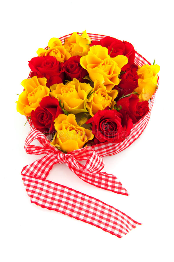 Yellow And Red  Roses Royalty Free Stock Photo