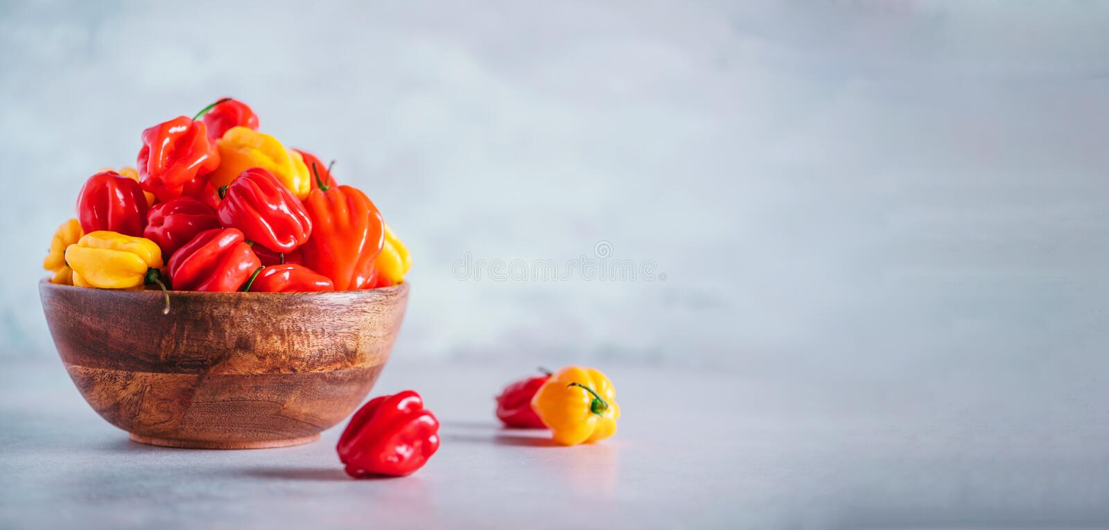 Yellow and red scotch bonnet chili peppers in wooden bowl over grey background. Copy space. Yellow and red scotch bonnet chili peppers in wooden bowl over grey royalty free stock images