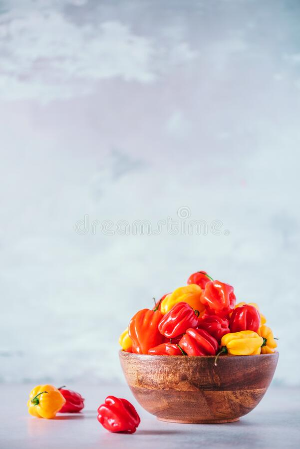Yellow and red scotch bonnet chili peppers in wooden bowl over grey background. Copy space. Yellow and red scotch bonnet chili peppers in wooden bowl over grey stock photography