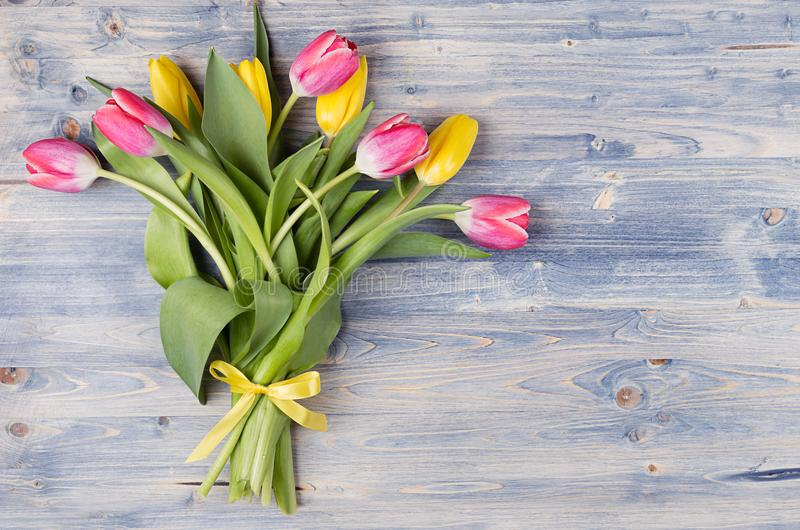 Yellow and red tulips bouquet with ribbon on blue shabby chic wood board. April spring easter background. royalty free stock images