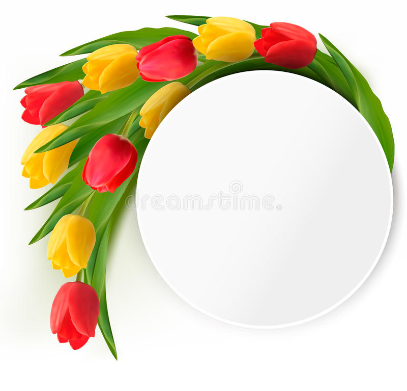 Yellow and red tulips holiday background. vector illustration