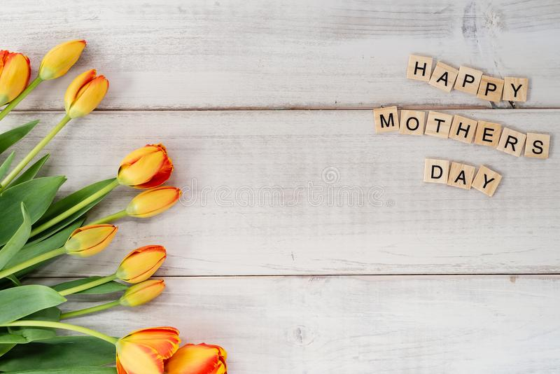 Yellow and red tulips on whitewashed wood with Mother`s Day mess. Age in letter tiles stock photos