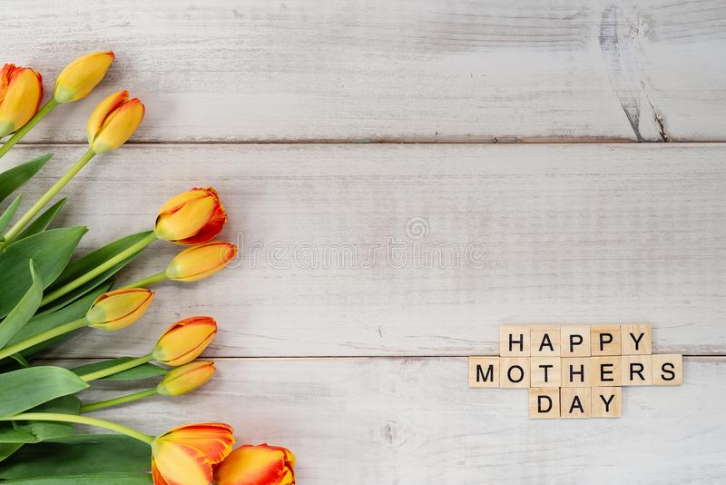 Yellow and red tulips on whitewashed wood with Mother`s Day mess. Age in letter tiles royalty free stock image