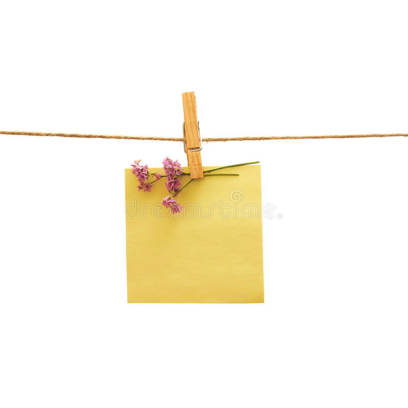 Yellow reminder and violet flower with peg royalty free stock image