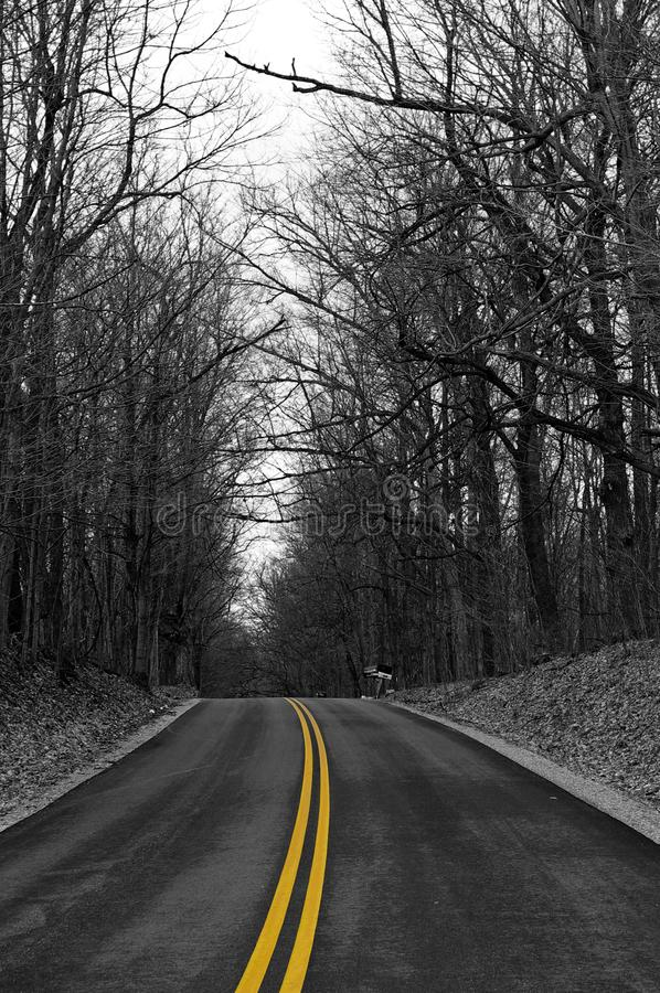 Yellow Road royalty free stock image