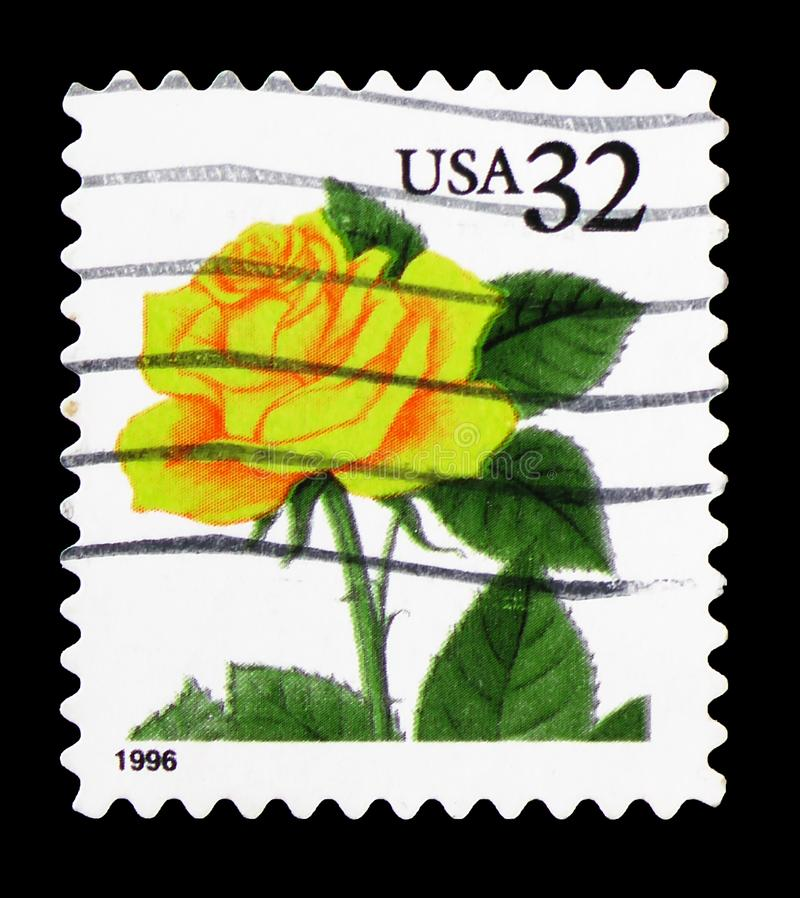 Yellow Rose, Flora and Fauna Issue serie, circa 1996. MOSCOW, RUSSIA - FEBRUARY 22, 2019: A stamp printed in United States shows Yellow Rose, Flora and Fauna royalty free stock photo
