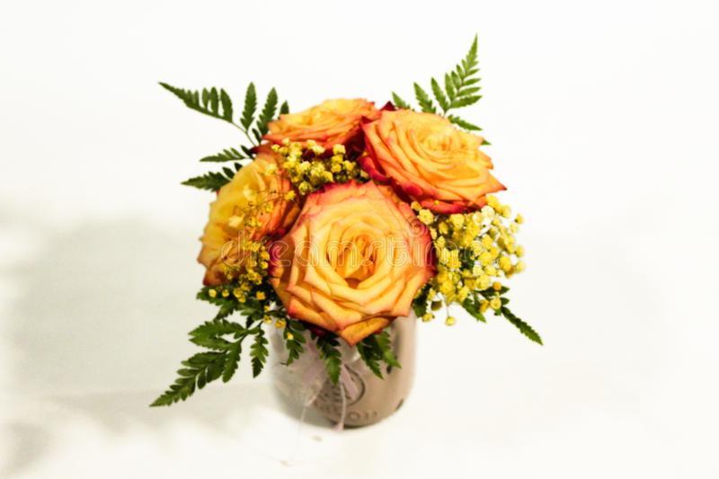 Yellow rose flowers arrangement isolated on white.  royalty free stock images