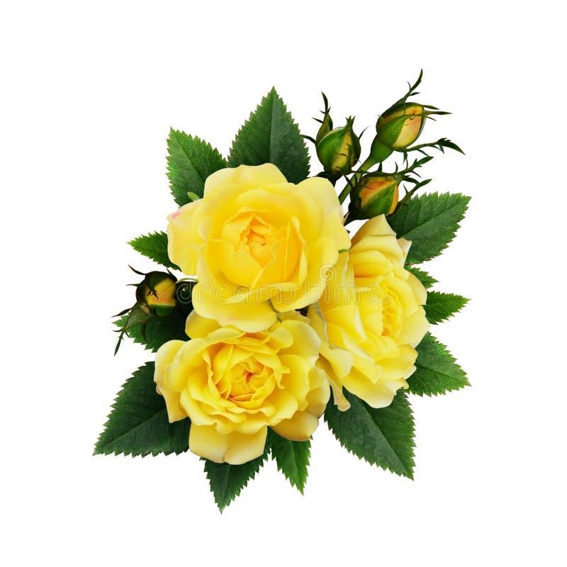 Yellow rose flowers arrangement stock image image of loving download yellow rose flowers arrangement stock image image of loving leaves 82234651 mightylinksfo