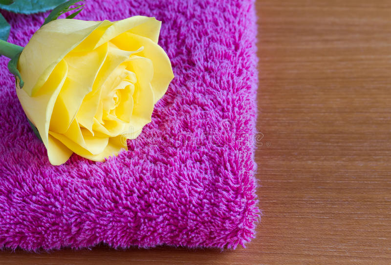 Yellow rose on a pink towel royalty free stock photography