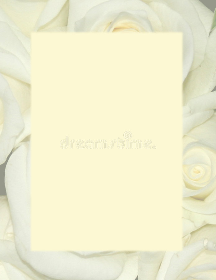 Yellow Roses - Background Stationery. Faded yellow roses with solid yellow insert to use as background or stationery