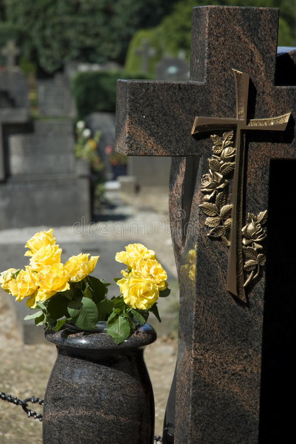 Yellow roses on a grave-yard royalty free stock photo