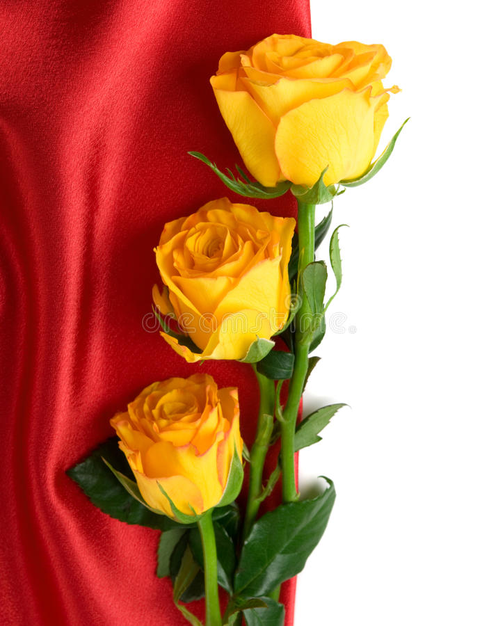 Download Yellow Roses On The Red Satin Stock Photo - Image of february, composition: 19939918