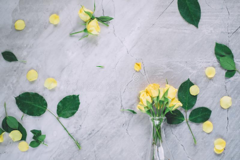 Yellow roses - wedding, holiday and floral garden styled concept. Elegant visuals royalty free stock photo