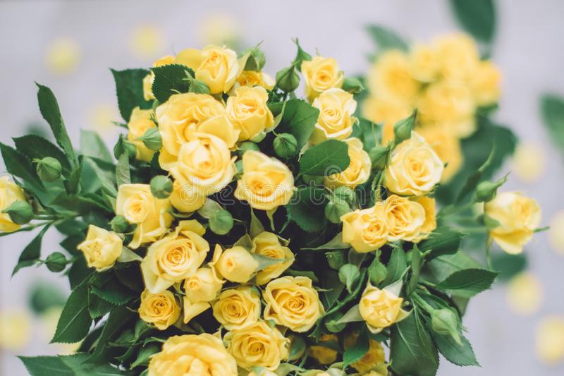Yellow roses - wedding, holiday and floral garden styled concept. Elegant visuals stock photos