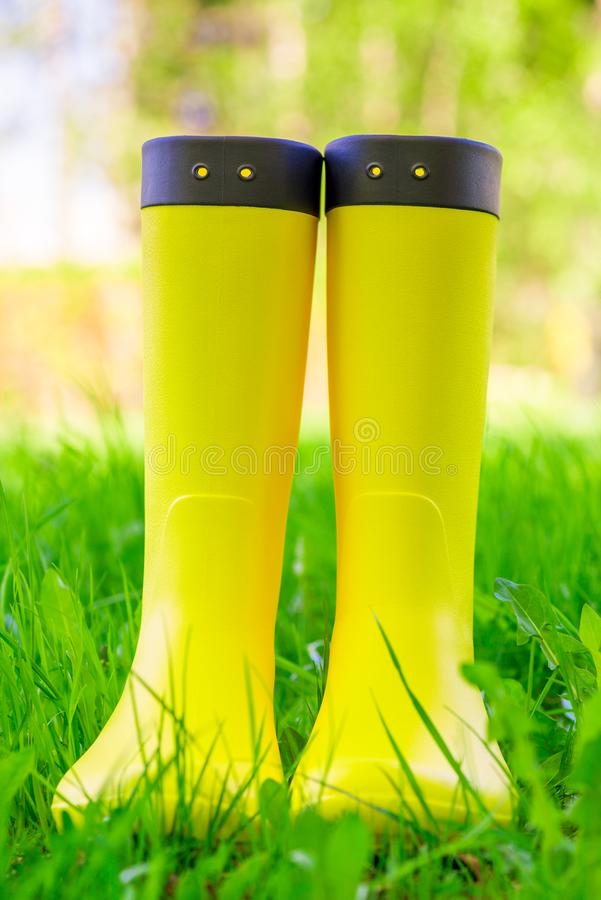 Yellow rubber boots close up on the lush green grass stock photography