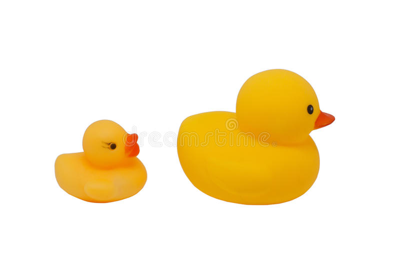Yellow rubber duck isolated(big and small duck). Yellow rubber duck (big and small duck) isolated over white background royalty free stock image
