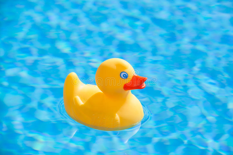 Yellow Rubber Duck Stock Photo Image Of Float Little