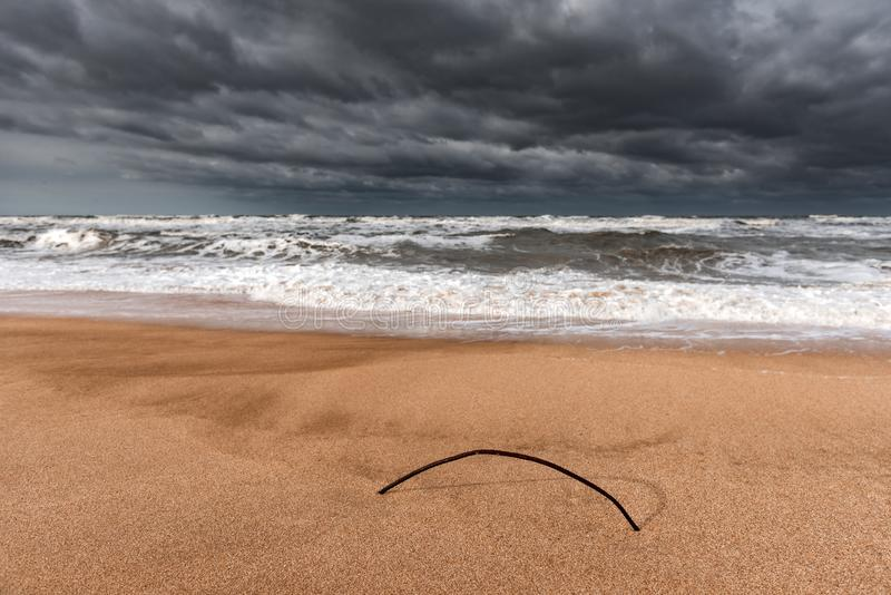 Yellow sand on an empty beach, stormy sea. Overcast weather stock images