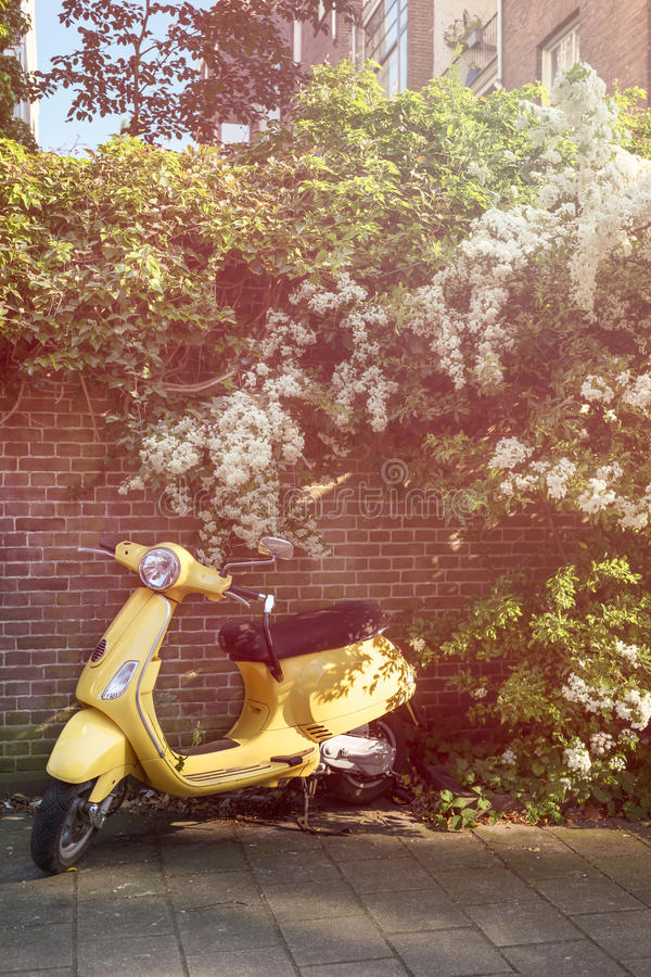 Yellow scooter parked royalty free stock photos