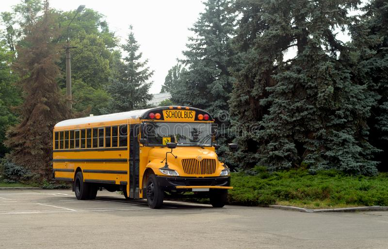 Yellow Shcool bus in green forest. Bus stop royalty free stock images