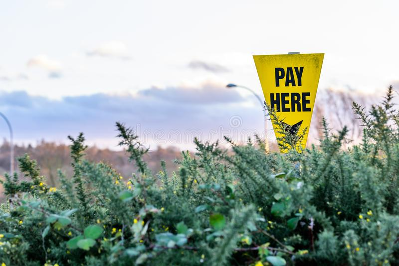 Yellow Sign with an arrow and the text Pay Here behind bushes.  stock image