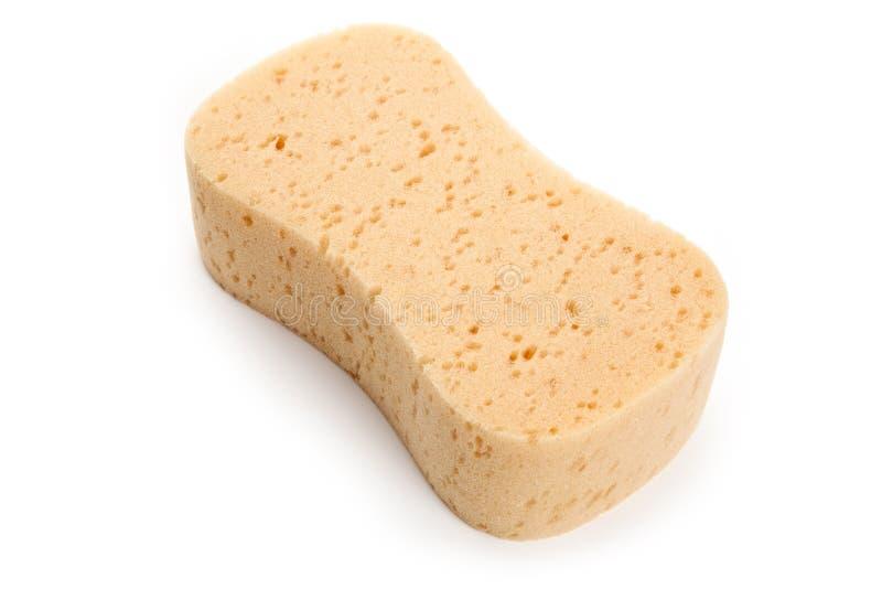 Download Yellow Sponge stock image. Image of white, scrubbing - 14858871