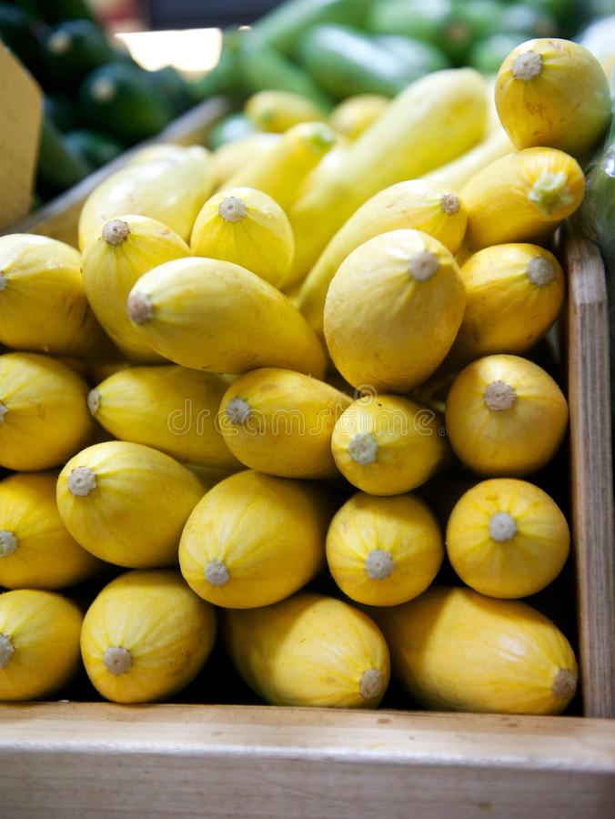 Yellow Squash in Wooden Grocery Store Bin royalty free stock photography