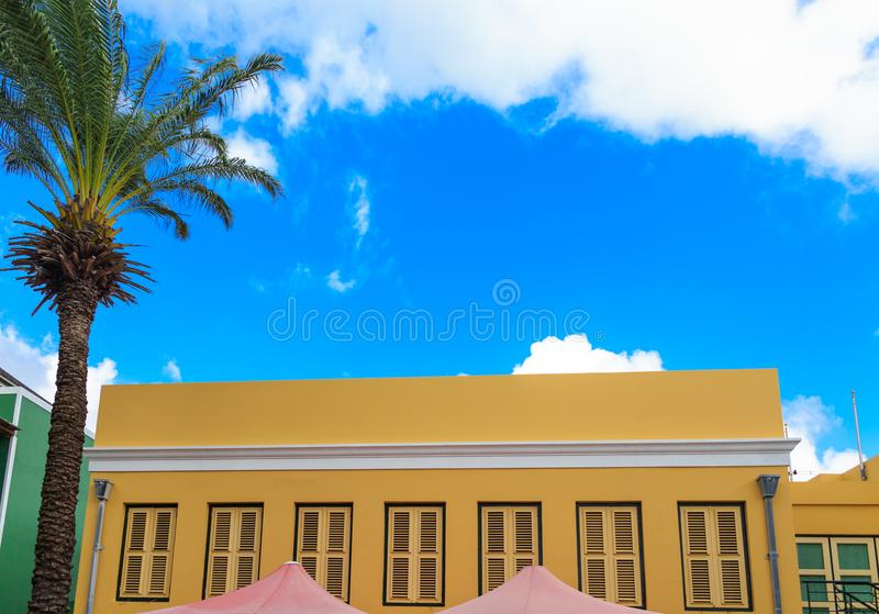 Palm Tree and Yellow Stucco in Curacao royalty free stock photos