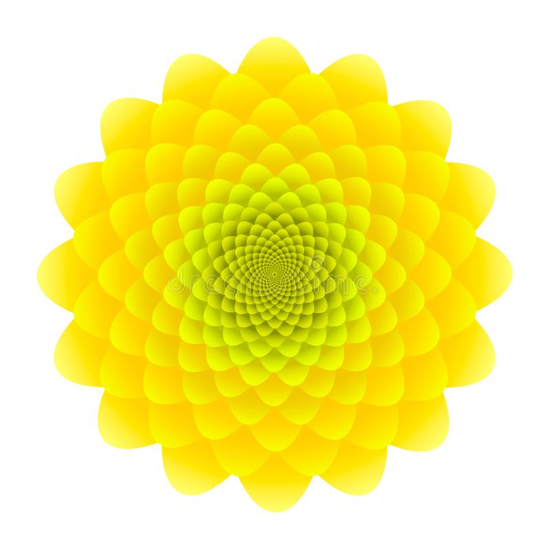 Yellow Sunflower inflorescence. Abstract floral pattern isolated on white background.  stock illustration