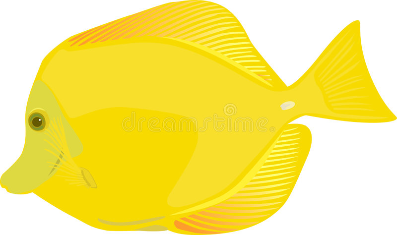 Download Yellow tang fish stock vector. Image of cartoon, illustrations - 1922617