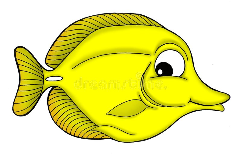 Yellow tang fish. Color illustration of yellow tang fish vector illustration