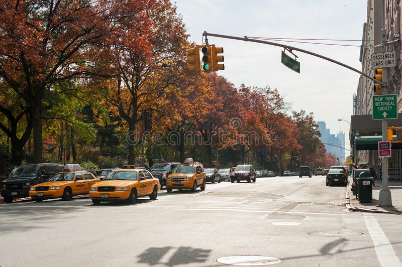 Yellow taxis in Central Park west in autumn stock image