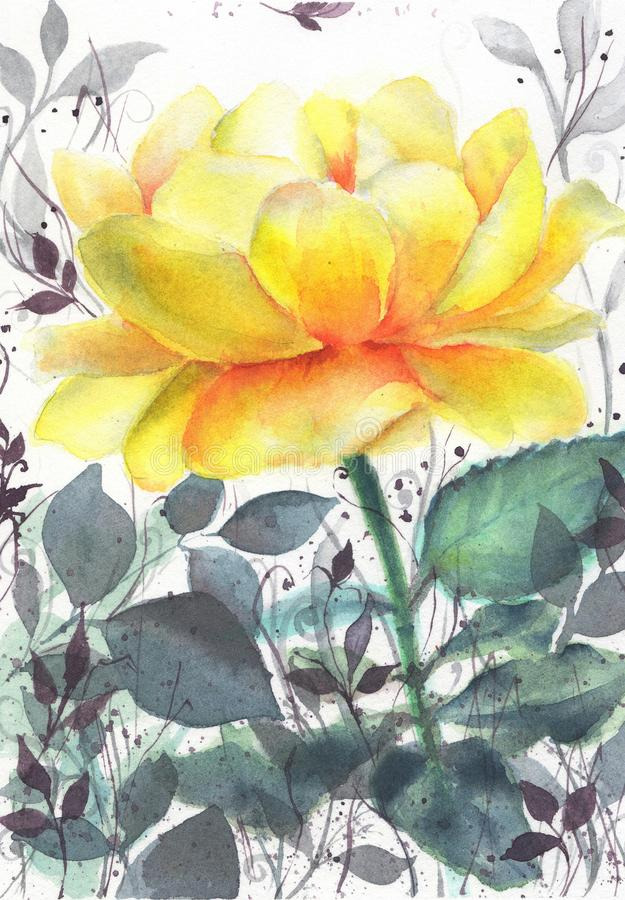 Yellow tea rose botanical watercolor. Watercolor illustration of a yellow tea rose in grass, botanical royalty free illustration
