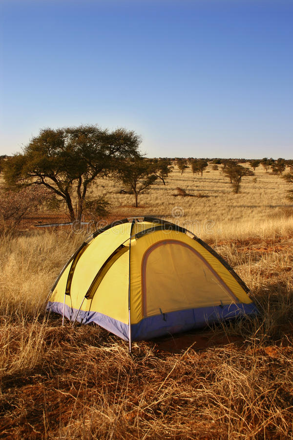 Download Yellow Tent In The Wilderness. Stock Photo - Image: 10716260