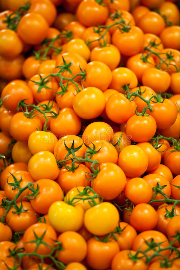 Download Yellow Tomatoes stock photo. Image of fresh, display - 17436334