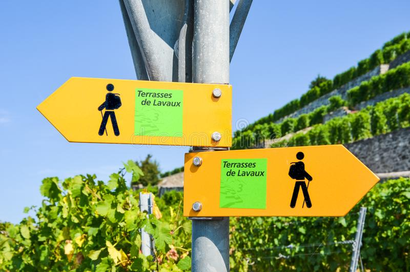 Yellow tourist sign in French saying Terraces of Lavaux giving directions in famous Lavaux wine region, Vaud, Switzerland. Blurred. Terraced vineyards in stock photos