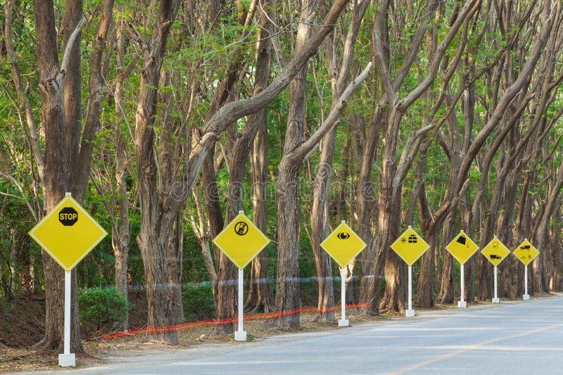 Yellow traffic signs on tropical road, beautiful shape of trees. And branches. Brake light trails foreground. Selective focus. Long exposure stock photography
