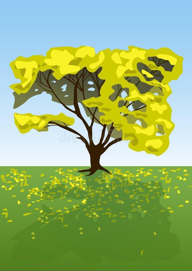 Yellow Tree Royalty Free Stock Photography