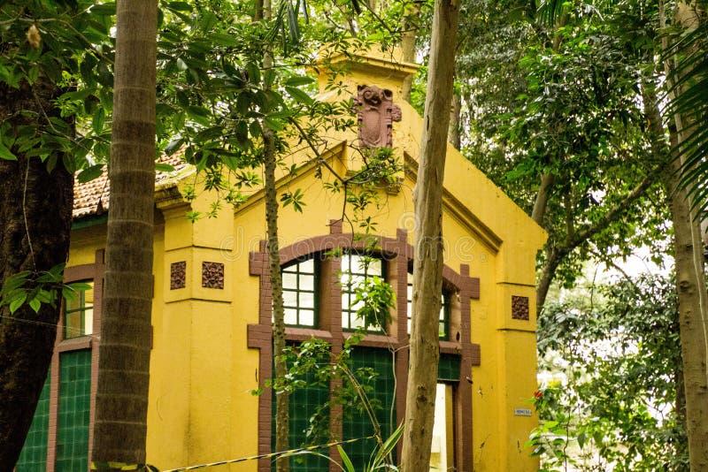 Yellow, Tree, Plant, House stock image