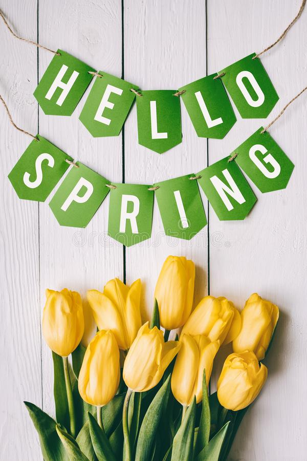 Yellow tulips bunch on white wooden planks rustic barn rural table backgropund. Hallo spring garland paper lettering, text,. Letters, inscription. Beautiful royalty free stock photo