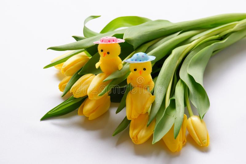 Yellow tulips flowers two chickens toys pink blue head green leafs stock photography