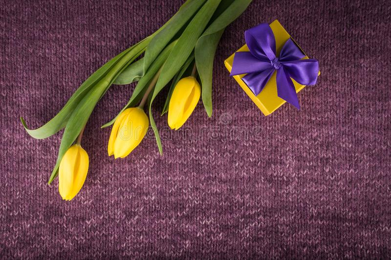 Yellow tulips and gift box on violet knitted background royalty free stock photos