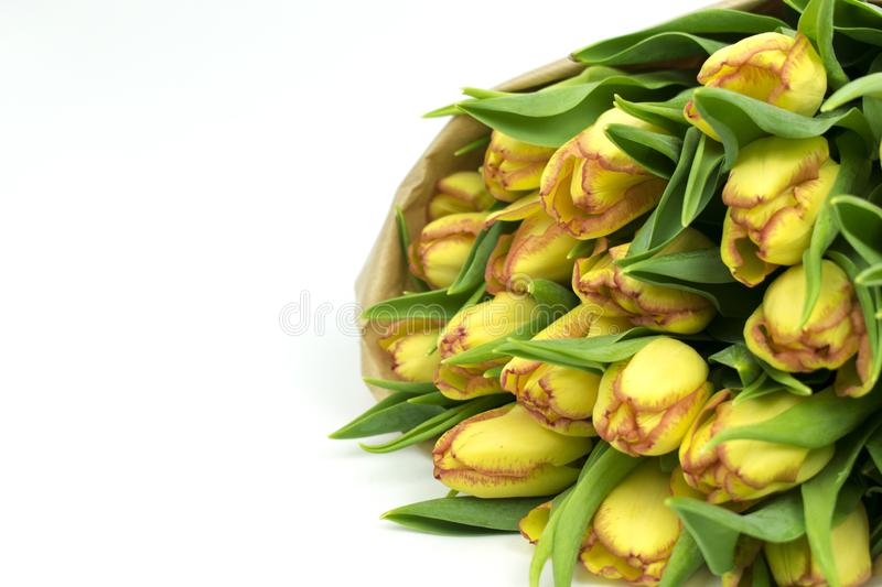 Yellow tulips in a paper bouquet. Valentine`s Day stock photos